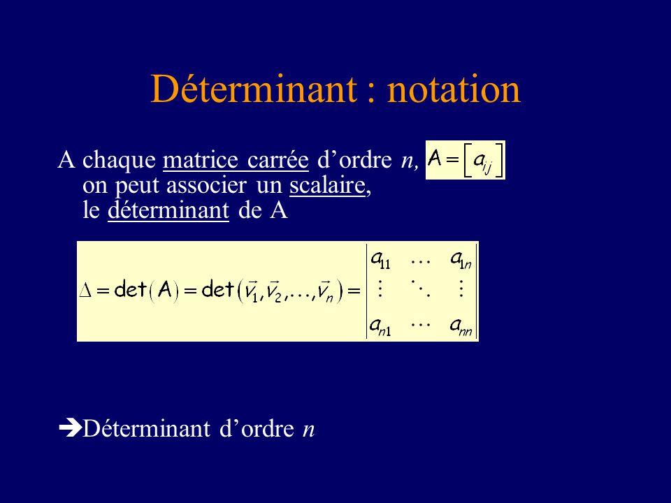 Déterminant : notation
