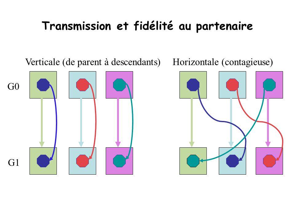 Transmission et fidélité au partenaire