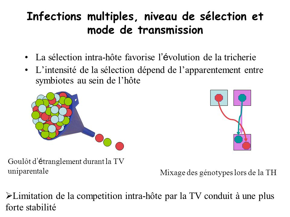 Infections multiples, niveau de sélection et mode de transmission