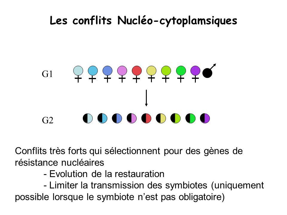 Les conflits Nucléo-cytoplamsiques