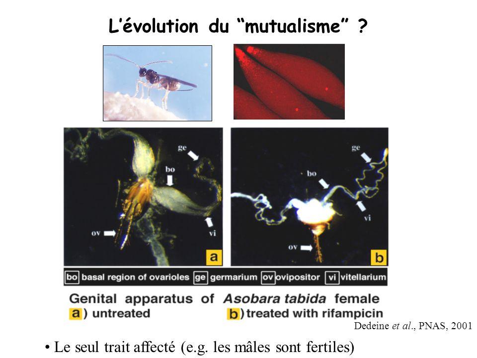 L'évolution du mutualisme
