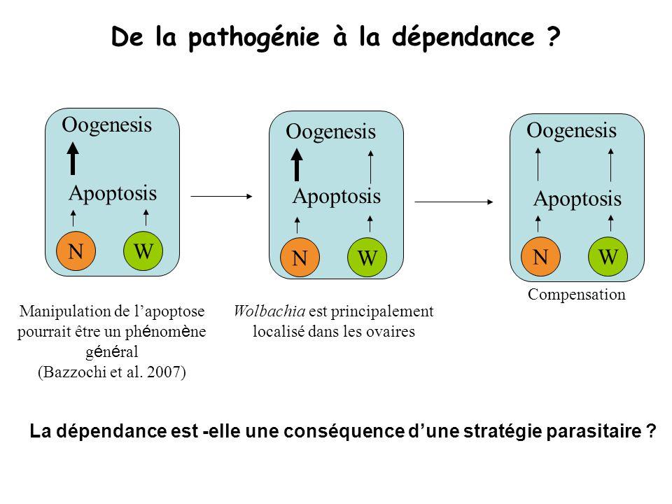 De la pathogénie à la dépendance