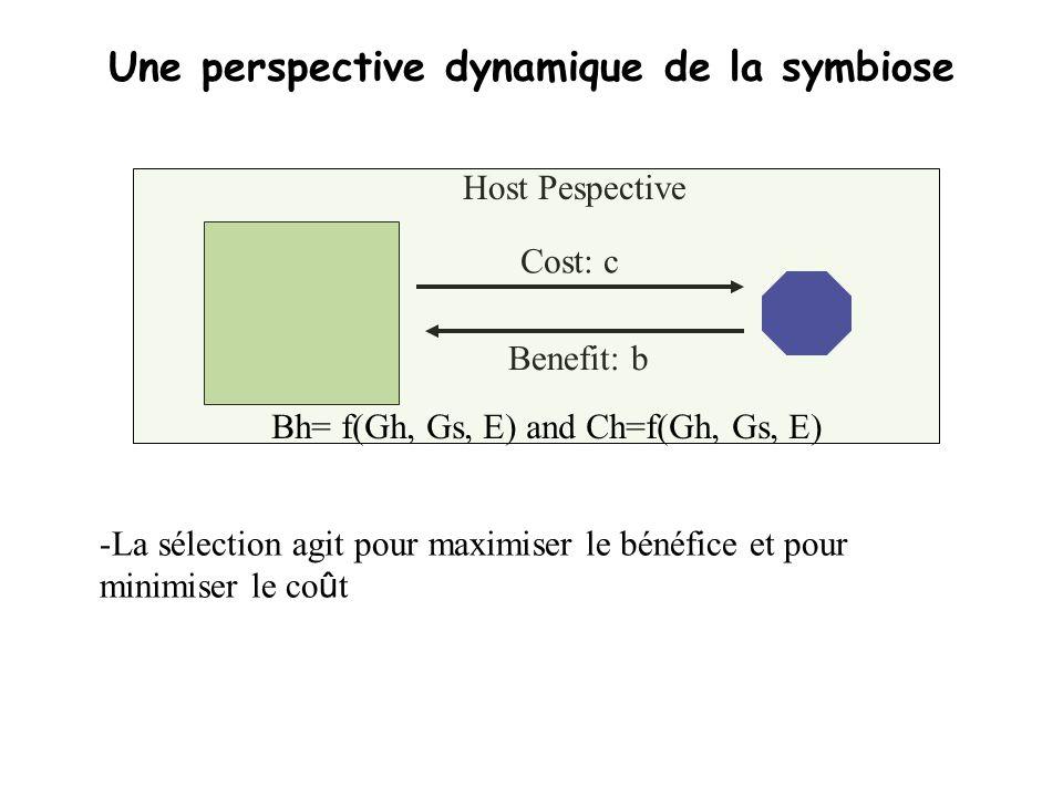 Une perspective dynamique de la symbiose