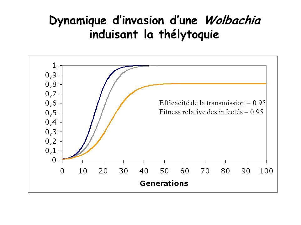 Dynamique d'invasion d'une Wolbachia induisant la thélytoquie