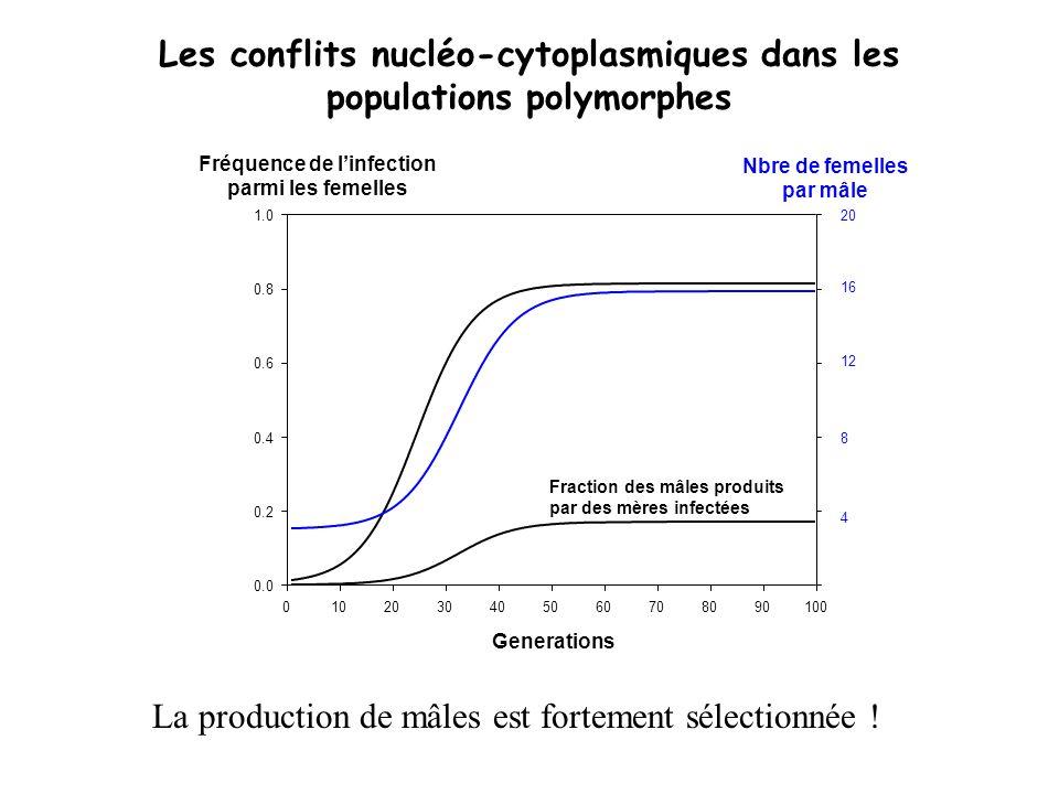 Les conflits nucléo-cytoplasmiques dans les populations polymorphes
