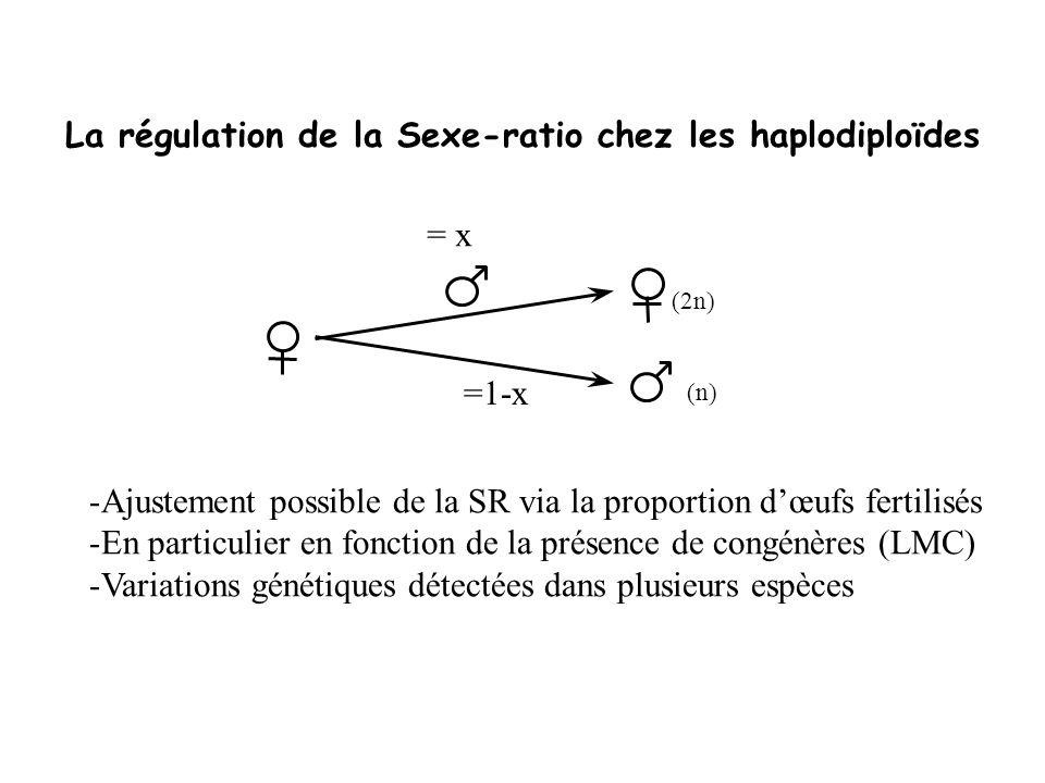 La régulation de la Sexe-ratio chez les haplodiploïdes