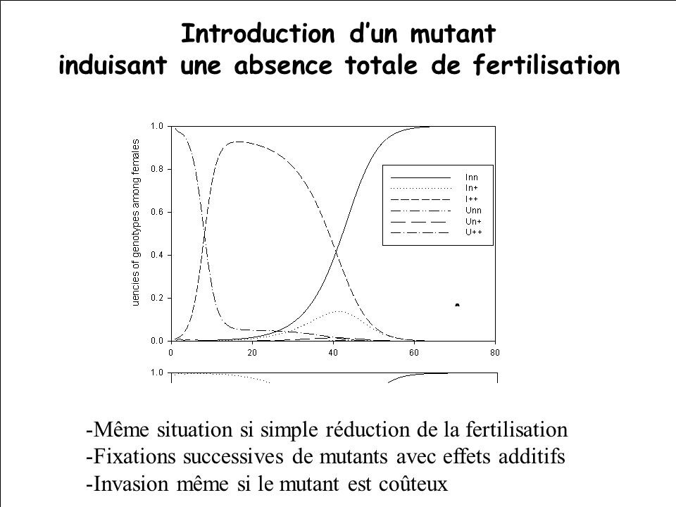 Introduction d'un mutant induisant une absence totale de fertilisation