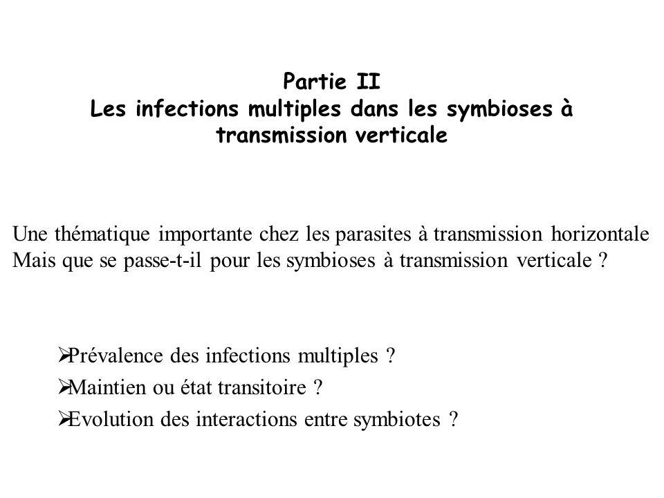 Partie II Les infections multiples dans les symbioses à transmission verticale