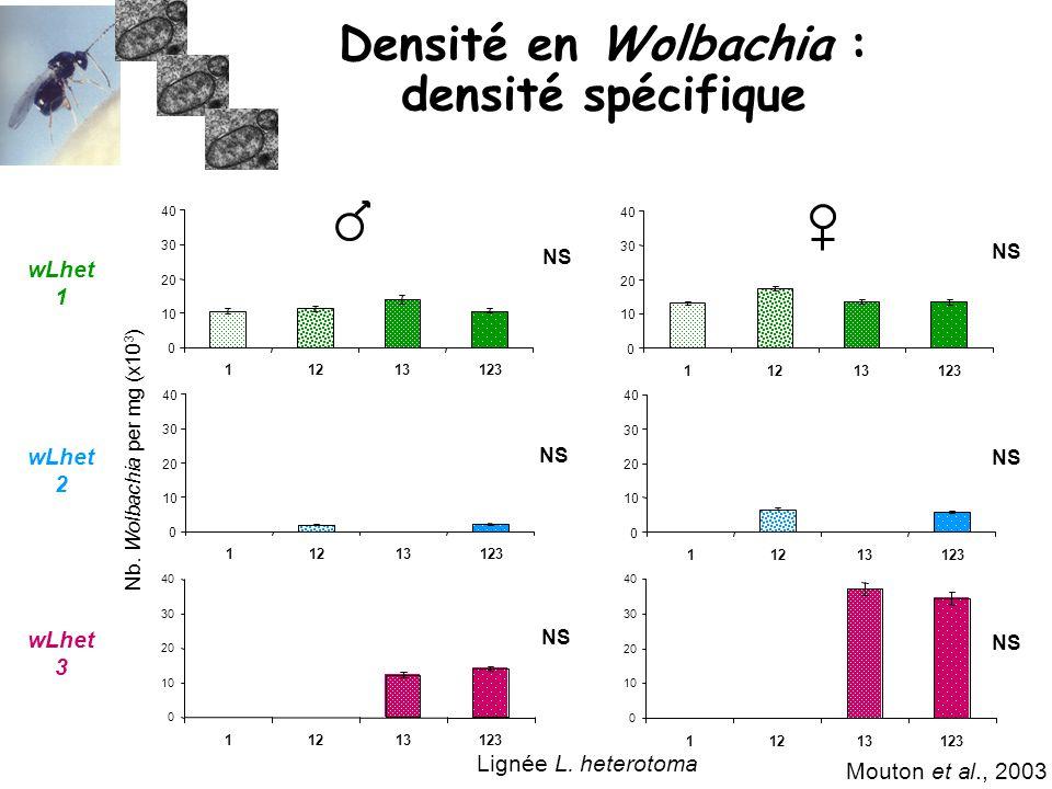 Densité en Wolbachia : densité spécifique
