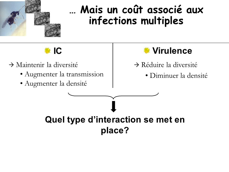… Mais un coût associé aux infections multiples