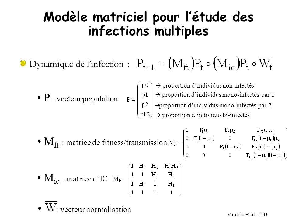 Modèle matriciel pour l'étude des infections multiples