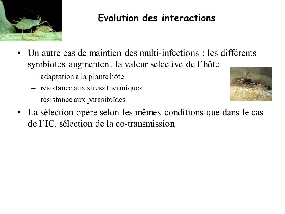 Evolution des interactions
