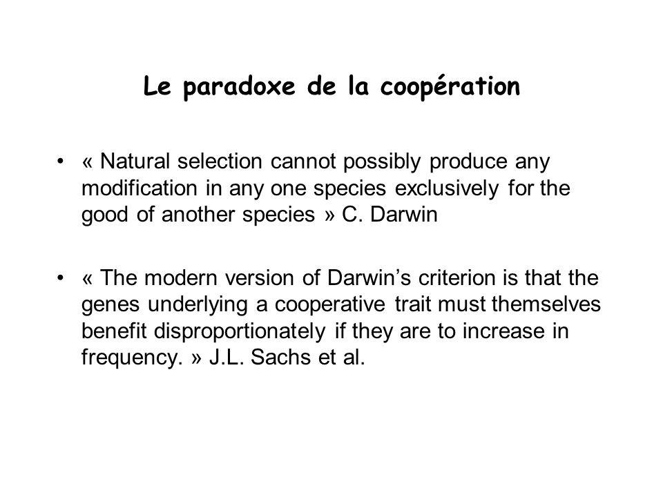 Le paradoxe de la coopération