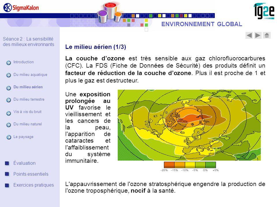 ENVIRONNEMENT GLOBAL Le milieu aérien (1/3)