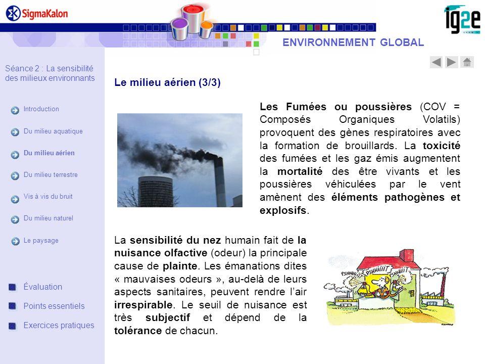 ENVIRONNEMENT GLOBAL Le milieu aérien (3/3)