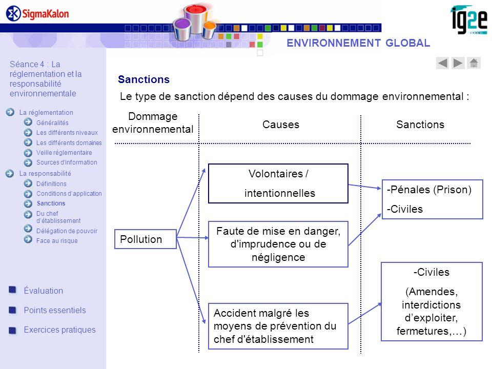 Le type de sanction dépend des causes du dommage environnemental :