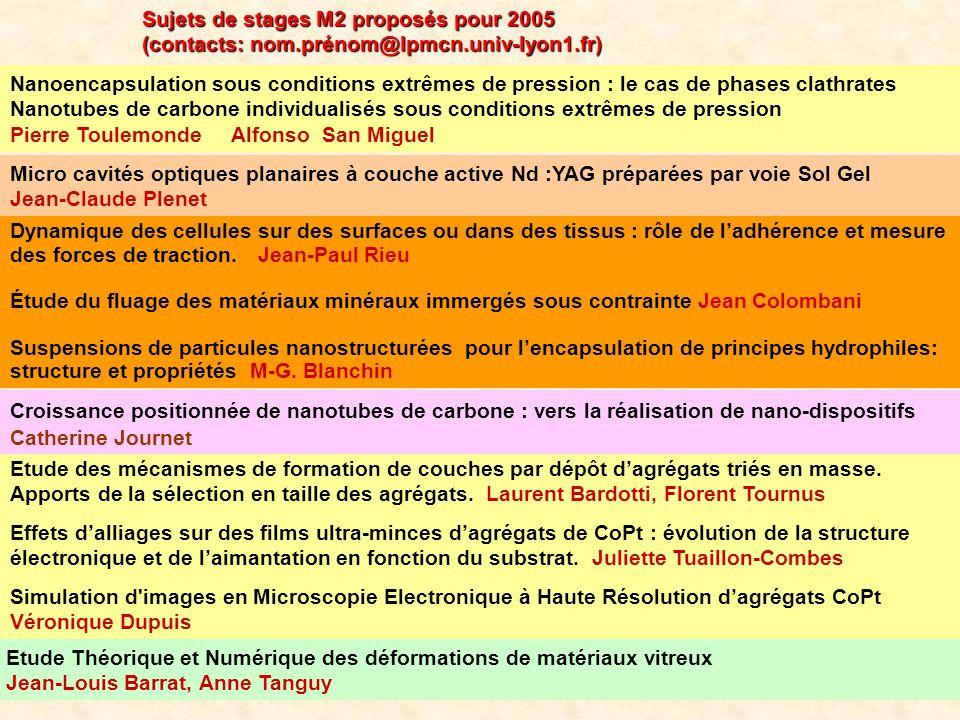 Sujets de stages M2 proposés pour 2005