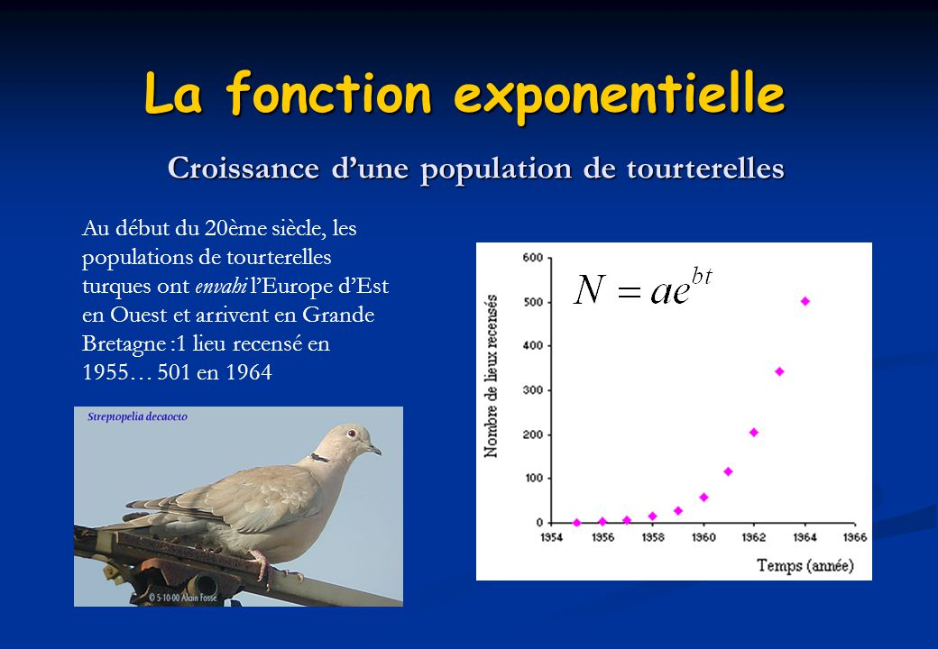 La fonction exponentielle