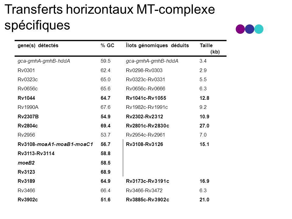 Transferts horizontaux MT-complexe spécifiques