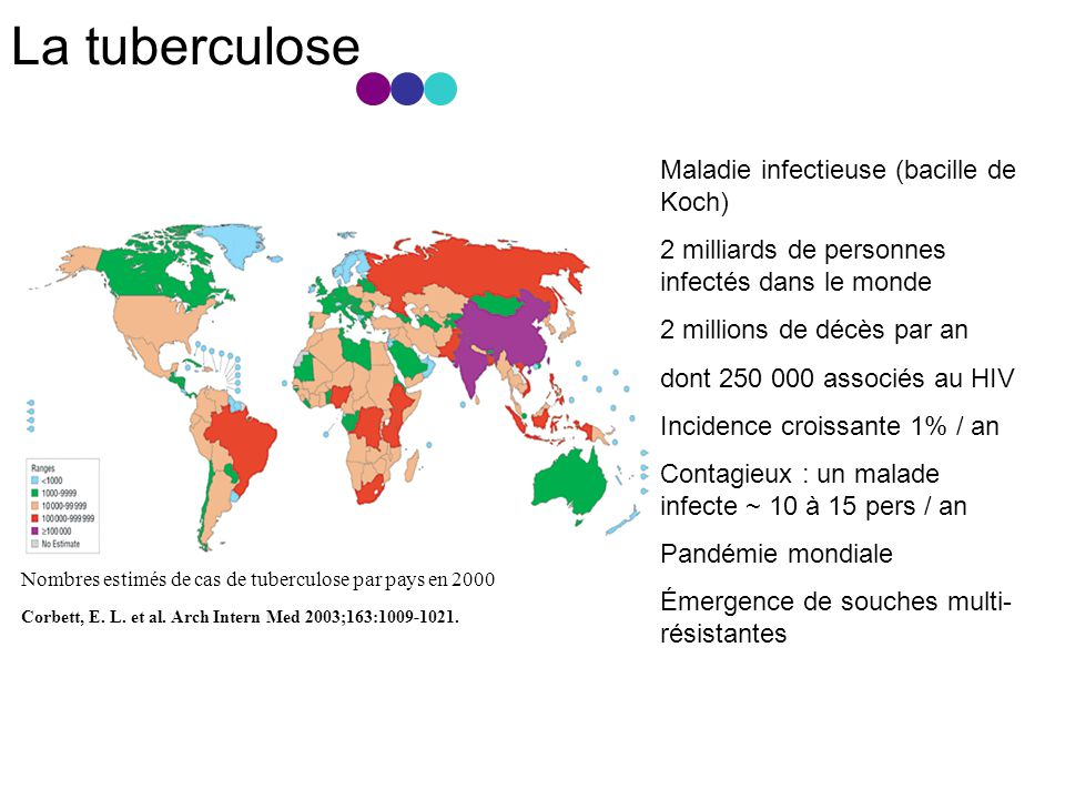 La tuberculose Maladie infectieuse (bacille de Koch)
