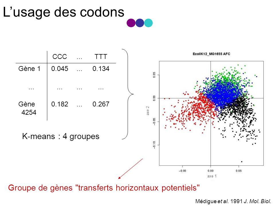L'usage des codons K-means : 4 groupes