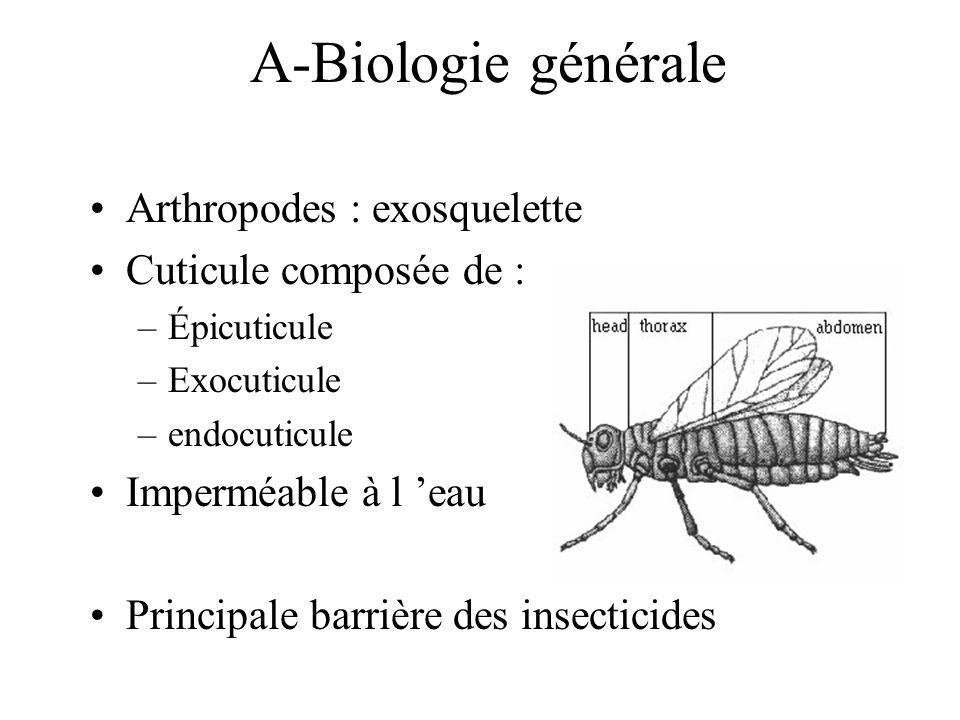A-Biologie générale Arthropodes : exosquelette Cuticule composée de :