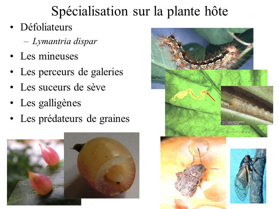 Spécialisation sur la plante hôte