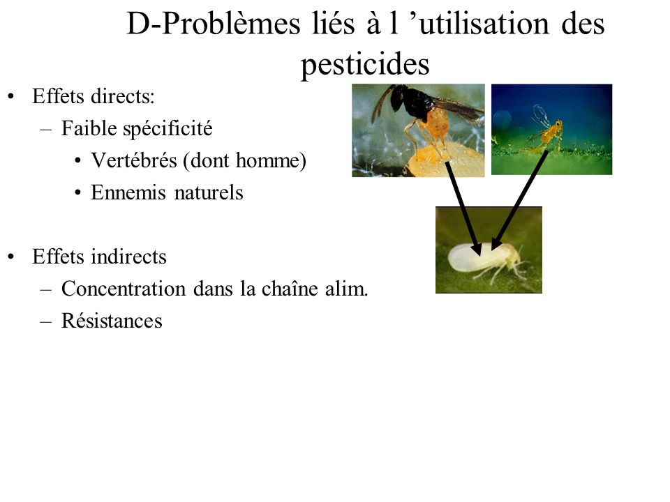 D-Problèmes liés à l 'utilisation des pesticides