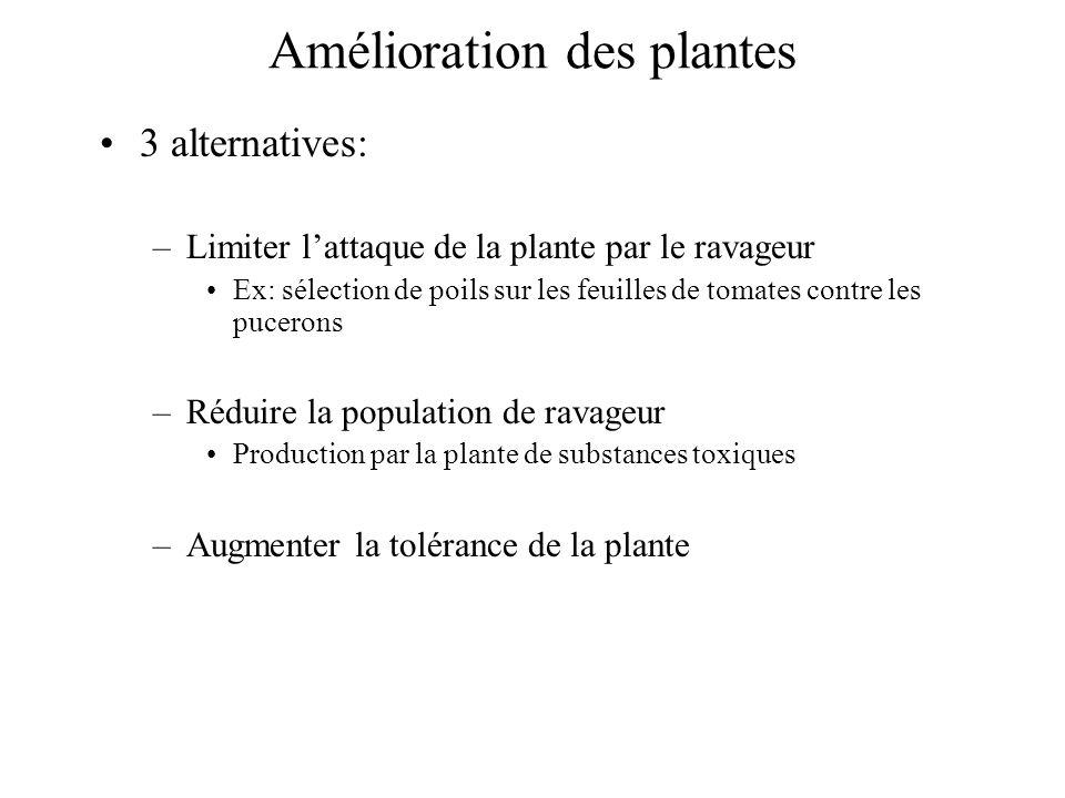 Amélioration des plantes