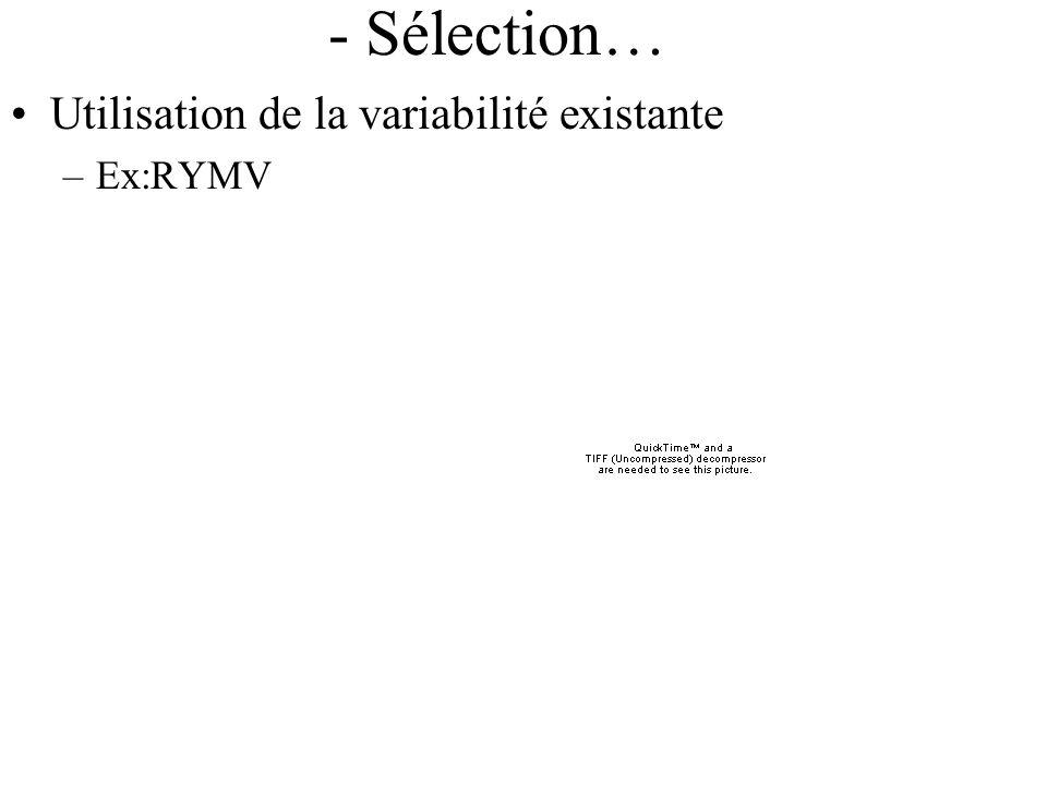 - Sélection… Utilisation de la variabilité existante Ex:RYMV