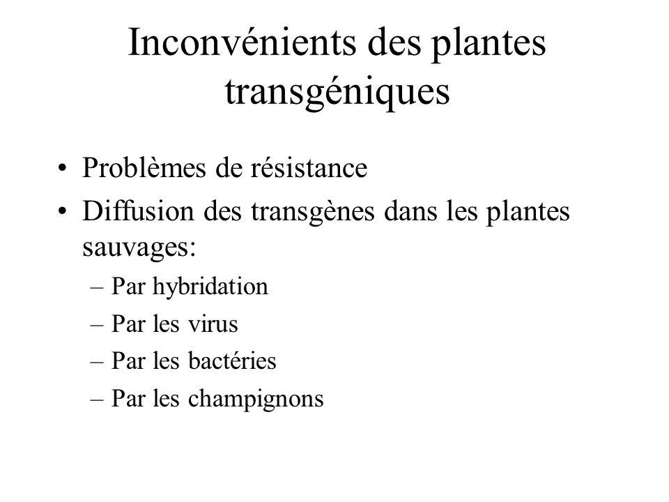 Inconvénients des plantes transgéniques