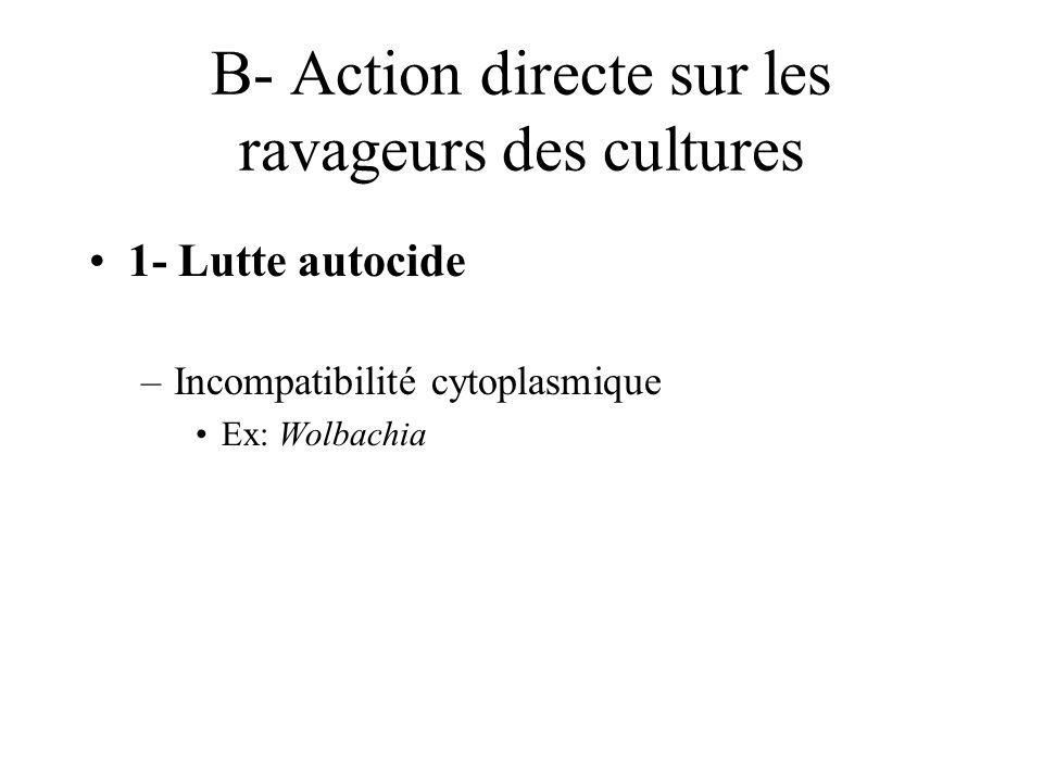 B- Action directe sur les ravageurs des cultures