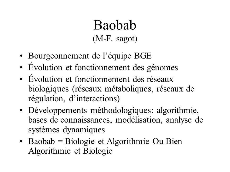 Baobab (M-F. sagot) Bourgeonnement de l'équipe BGE