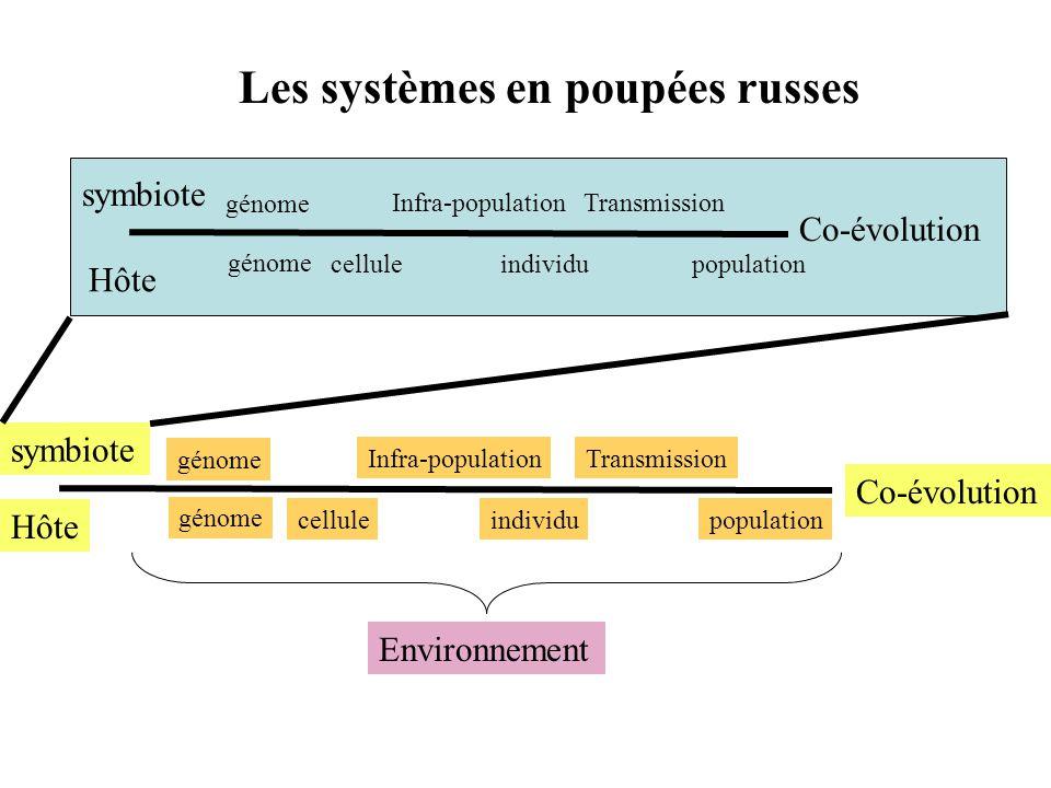 Les systèmes en poupées russes