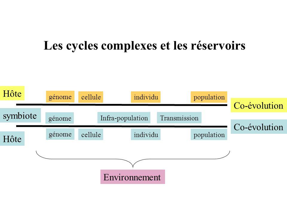 Les cycles complexes et les réservoirs