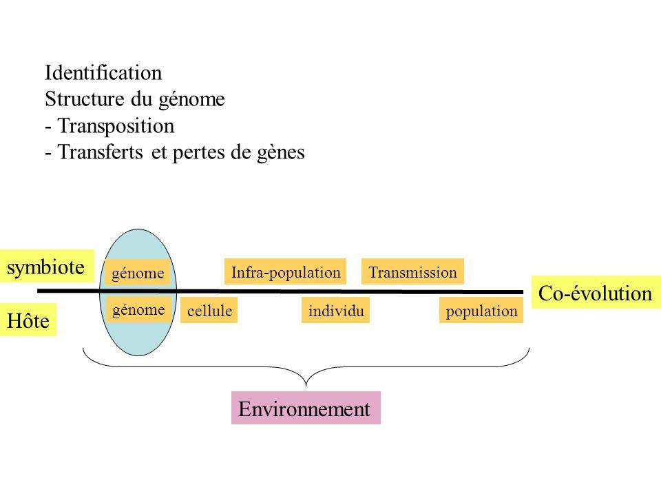Transferts et pertes de gènes