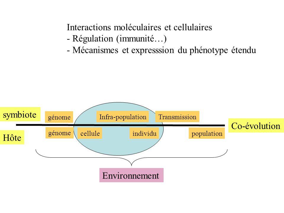 Interactions moléculaires et cellulaires Régulation (immunité…)