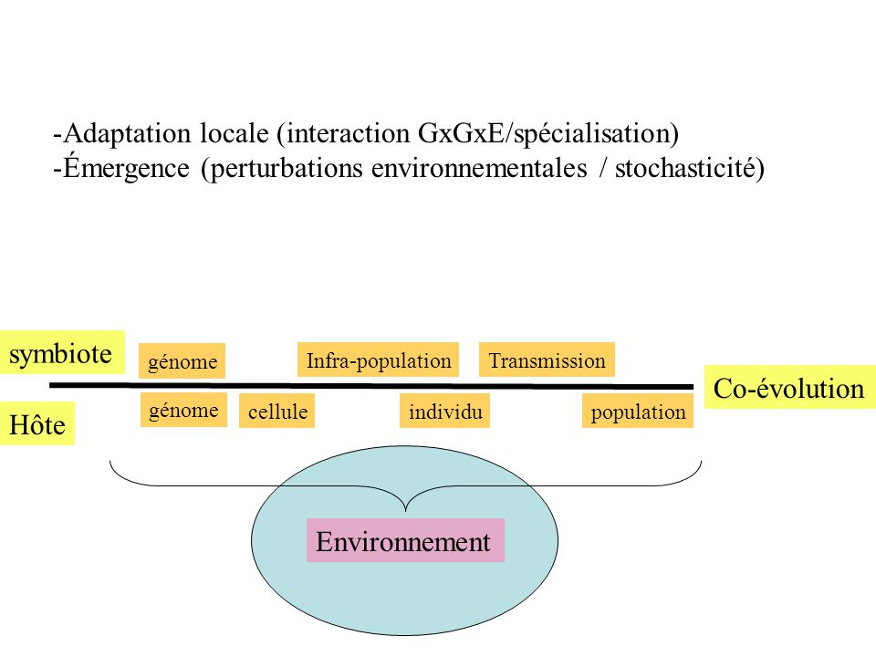 Adaptation locale (interaction GxGxE/spécialisation)