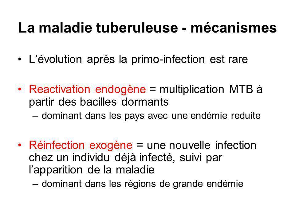 La maladie tuberuleuse - mécanismes