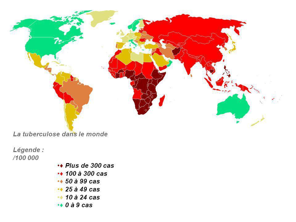 La tuberculose dans le monde