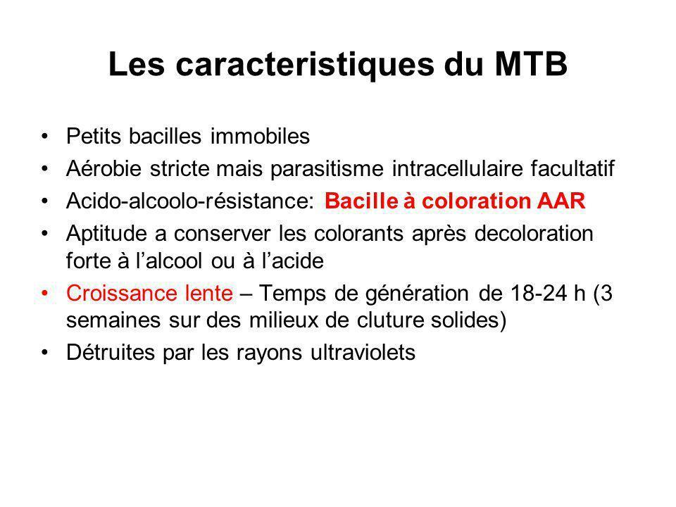 Les caracteristiques du MTB