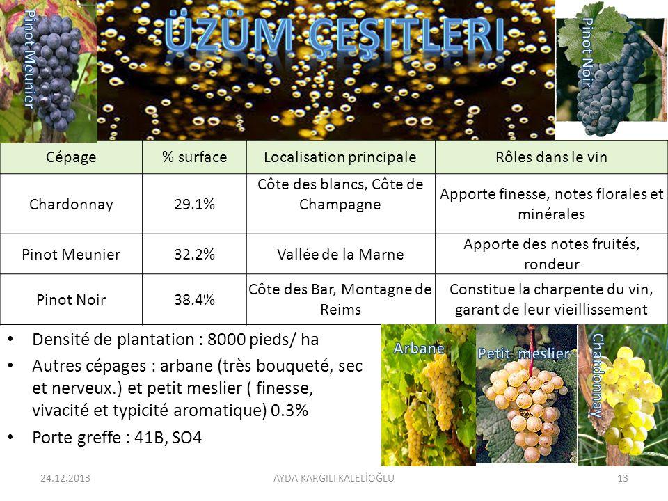 üzüm çeşitleri Densité de plantation : 8000 pieds/ ha