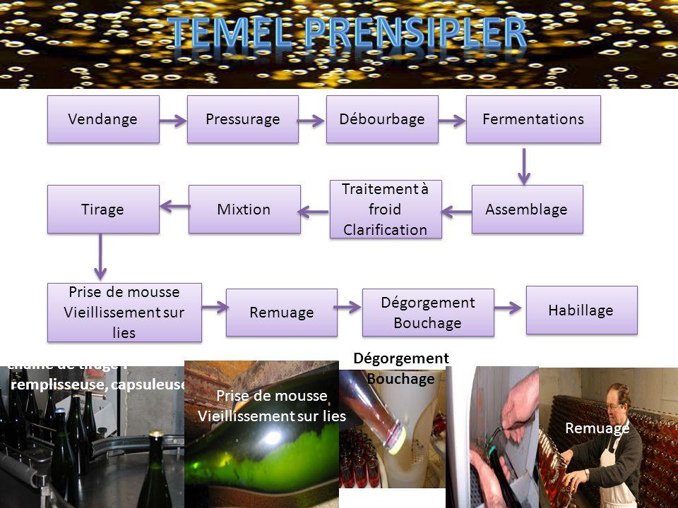temel prensipler Vendange Pressurage Débourbage Fermentations