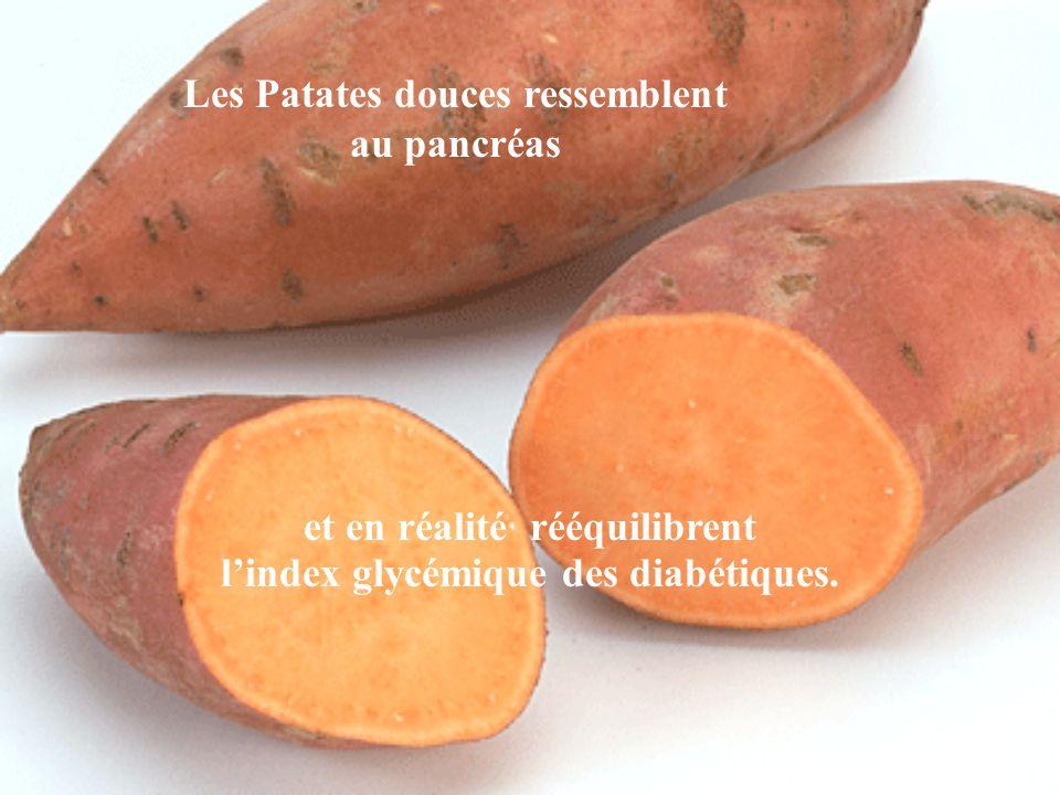 Les Patates douces ressemblent au pancréas