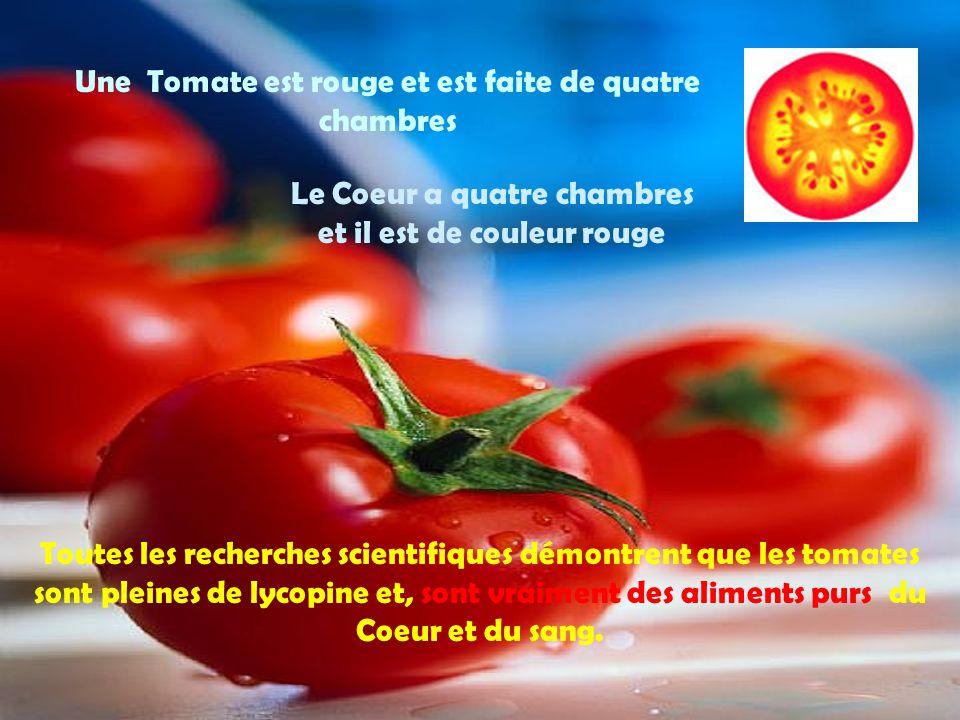 Une Tomate est rouge et est faite de quatre chambres