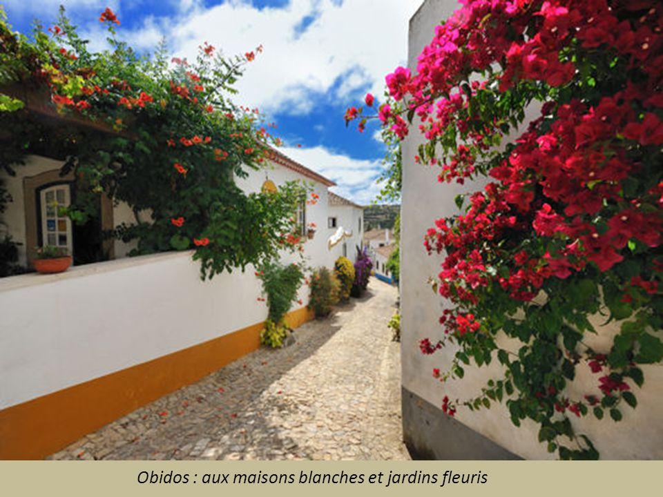 Obidos : aux maisons blanches et jardins fleuris