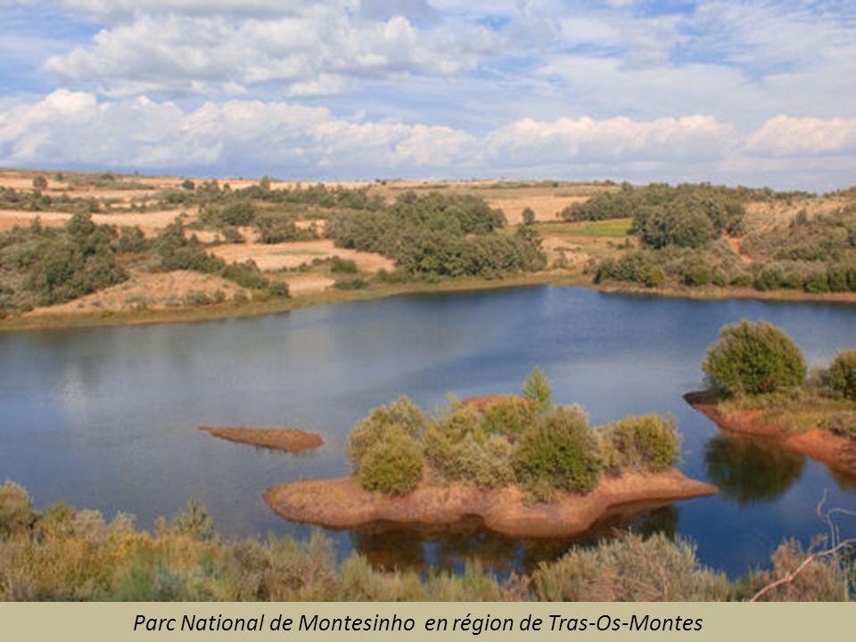 Parc National de Montesinho en région de Tras-Os-Montes