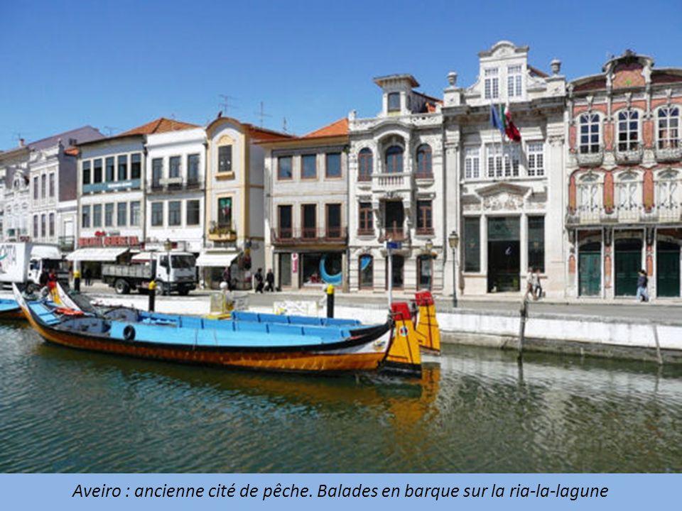 Aveiro : ancienne cité de pêche. Balades en barque sur la ria-la-lagune