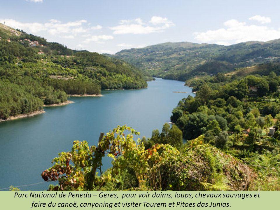 Parc National de Peneda – Geres, pour voir daims, loups, chevaux sauvages et