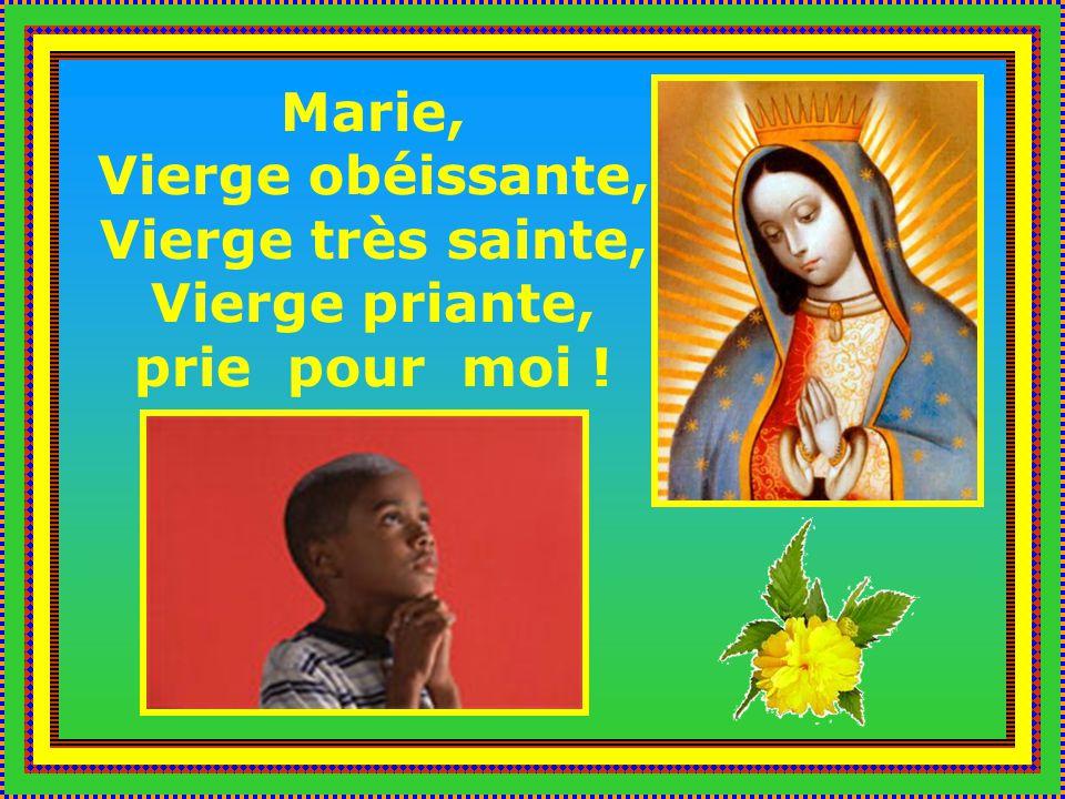 Marie, Vierge obéissante, Vierge très sainte, Vierge priante, prie pour moi !